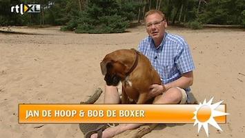 RTL Boulevard Mysterie rond twitterde hond van Jan de Hoop