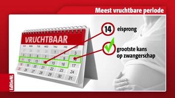 Editie NL Afl. 216