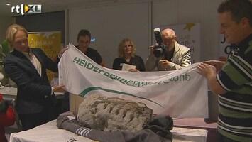 RTL Nieuws Megafossiel gevonden bij opgraving Zuid-Limburg