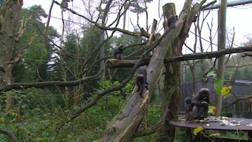 Burgers' Zoo Natuurlijk - Afl. 9