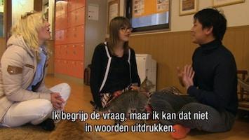 Britt & Ymke En Het Mysterie Van ... - En Het Mysterie Van De Witte Tafeldame