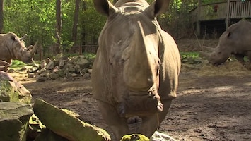 Uitgelicht - Afl. 29: Burgersâ' Zoo
