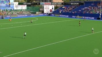 Ek Hockey 2013 - Ierland - Belgie (dames)