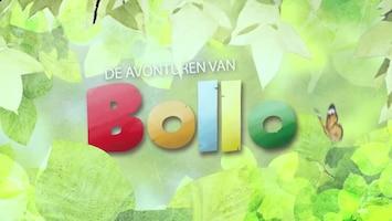 De Avonturen Van Bollo Afl. 9