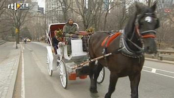 RTL Nieuws 'Weg met de paardenkoets in New York'