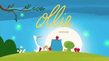 Ollie - Op Stelten
