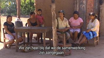 Wereldzaken: De Kracht Van Duurzaam Ondernemen (rtl 4) - Wereldzaken: De Kracht Van Duurzame Business /3