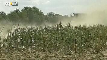 RTL Nieuws Watertekort en mislukte oogsten door droogte VS
