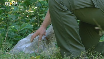 RTL Nieuws Steeds meer afval gedumpt in Nederlandse bossen