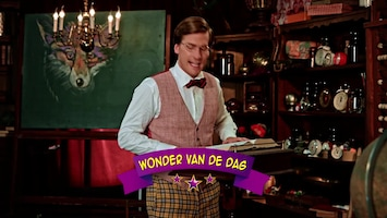 Wonderschool - Wonderlijke Truc Met Paperclips
