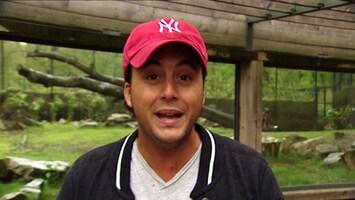 Burgers' Zoo En Waarom - Alec Over De Dierenarts