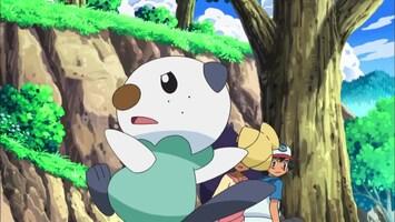 Pokémon - Sandile Blaast Stoom Af!