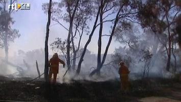 RTL Nieuws Australiërs op de vlucht voor bosbranden