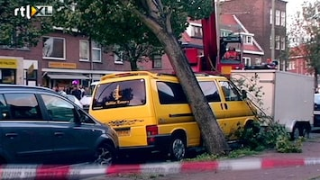 RTL Nieuws Bomen vallen massaal om door wind
