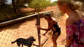 Ibiza 24/7 - Uitzending van 08-10-2009