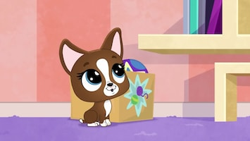 Littlest Pet Shop: A World Of Our Own Afl. 7