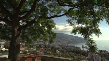 Pluijms Eetbare Wereld - Madeira