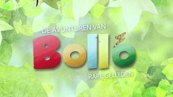 De Avonturen Van Bollo
