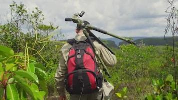 Wild Colombia - Chiribiquete