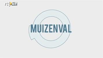 Minute To Win It - Muizenval