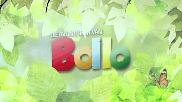 De Avonturen Van Bollo - Afl. 12