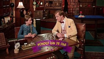 Wonderschool - Wonder Van De Omgekeerde Kaart