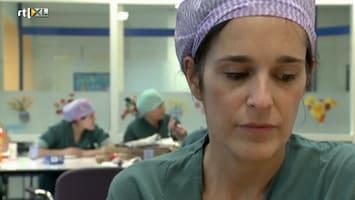 De Medisch Specialist Als Dokter En Mens - Uitzending van 14-08-2011