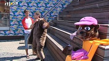 Editie NL Wat is een goede mascotte?
