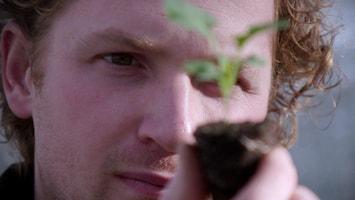 Sensoren, drones en zelfrijdende tractor: de boer gaat dataoogsten