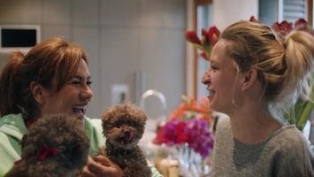 Buurman, Wat Doet U Nu? Patty Brard en Jan Jaap Van Der Wal