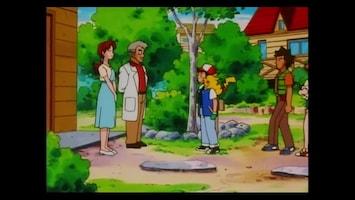 Pokémon Een echte vriend