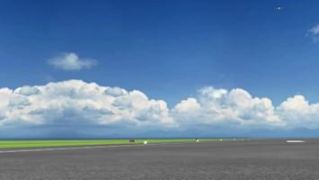 Airport: Winky's Avonturen Vogels op visite