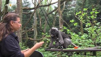 Burgers' Zoo Natuurlijk - Afl. 2