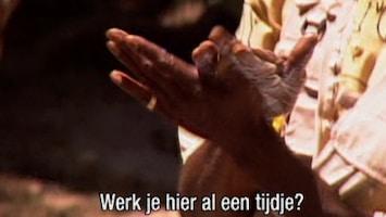 Sexcetera - Met De Billen Bloot! /18