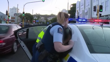 Politie In Actie Afl. 16