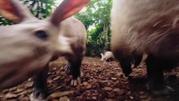 Uitgelicht - Afl. 32: Burgersâ' Zoo