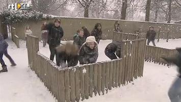 Editie NL Profiteren van de sneeuw