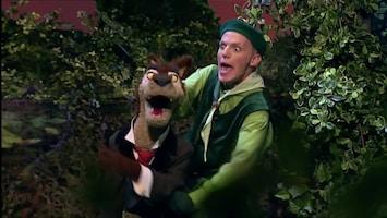 Sprookjesboomfeest - Doornroosje