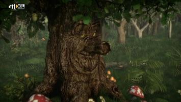 Sprookjesboom - Sprookjesboom /106