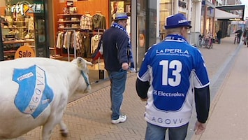 Voetbalfans Met de koe door de stad