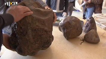 RTL Nieuws Schat gevonden in dode potvis