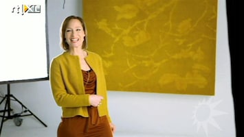RTL Boulevard Prinses Margarita ontwerpt kleed