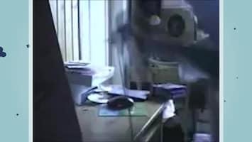 De Vijftien Vetste Video's Van Vandaag - Afl. 10
