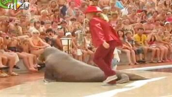 Editie NL Humor: walrus doet Michael Jackson na