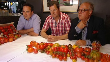 Editie NL De grote tomaten-test