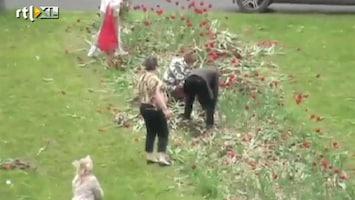 RTL Nieuws Massale tulpenroof in Moskou