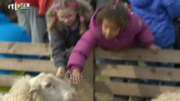 RTL Nieuws Tweede paasdag: schapen knuffelen en boogschieten