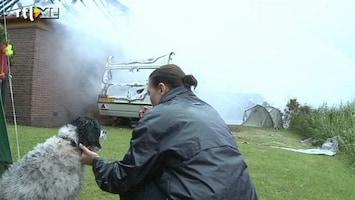 RTL Nieuws Hond overleeft hevige woningbrand