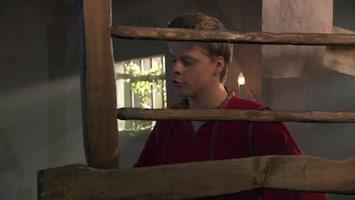 Het Mysterie Van... De rode schoentjes (2)