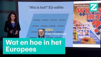 Europese verkiezingen stemmen parlement kandidaten partijen zetels
